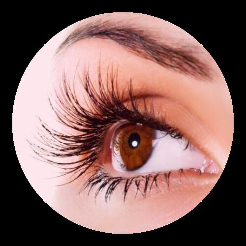 Eye Beauty